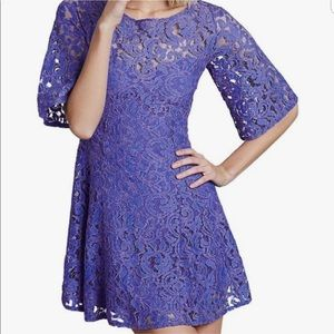 Free people gypsy mountain blue lace skater dress